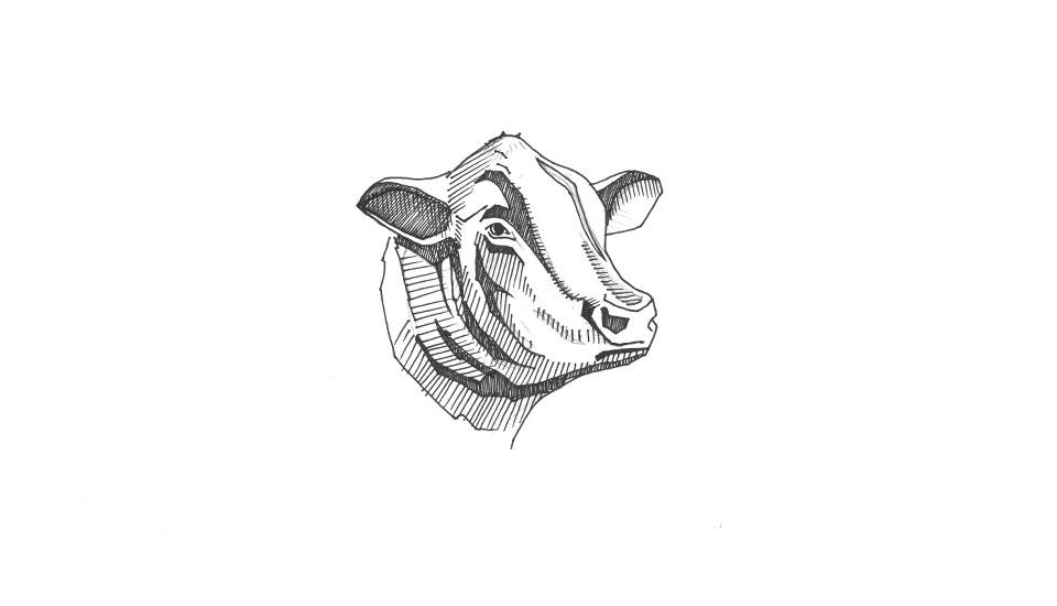 illustration, crodh dubh, branding